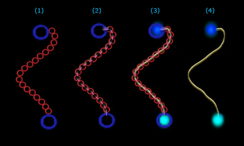 The Deep: Rope membrane